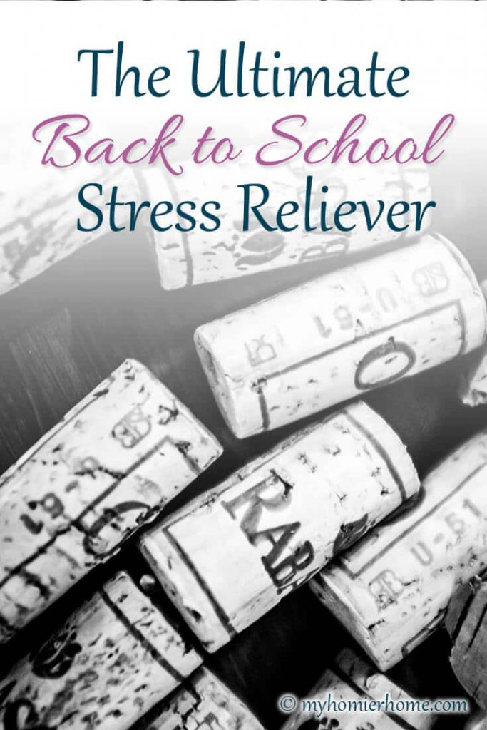 In need of a back to school stress reliever? Enter Dry Farm Wines! It's exactly the thing you need... and it's healthy!